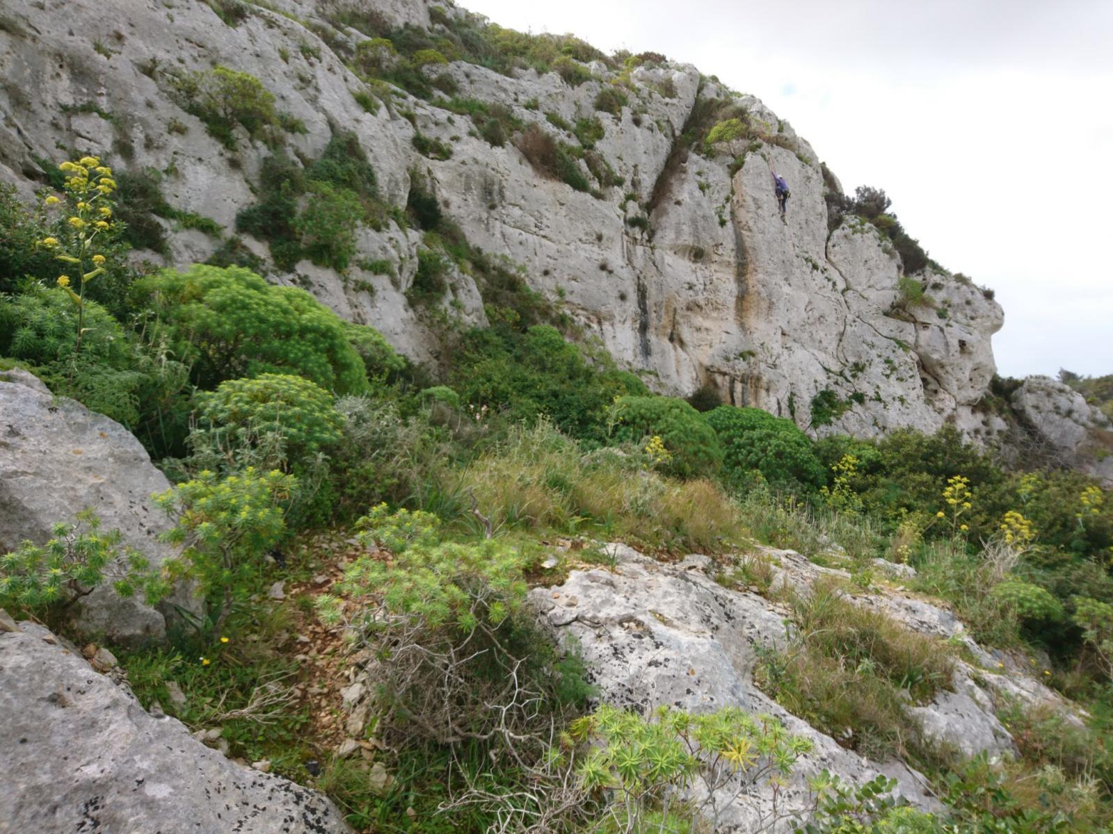 Monolith Buttess Victoria lines