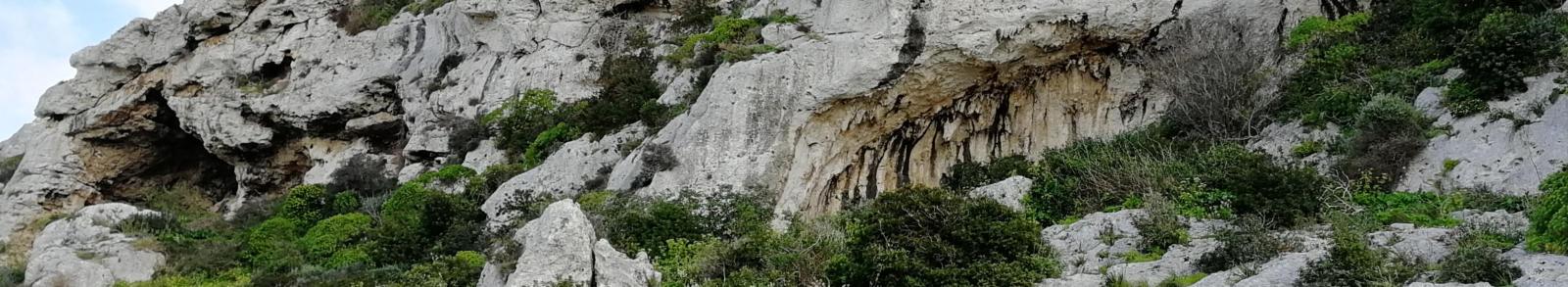 Victoria Lines - Cave