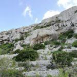 Victoria Lines caves