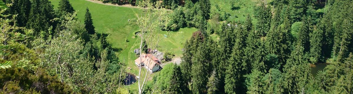 Klettern am Falkenstein