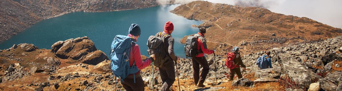 Wanderstöcke Trekkingstöcke