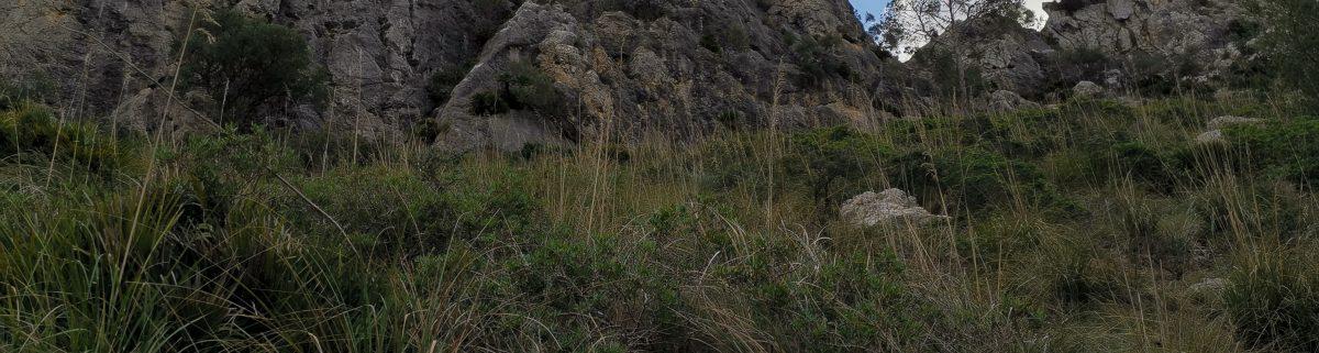 Klettergebiet auf Mallorca