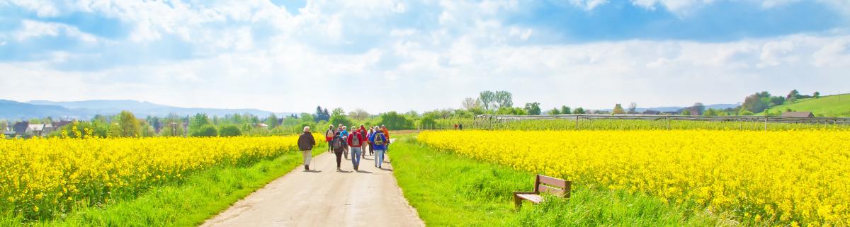 Wandern in Deutschland durch Felder