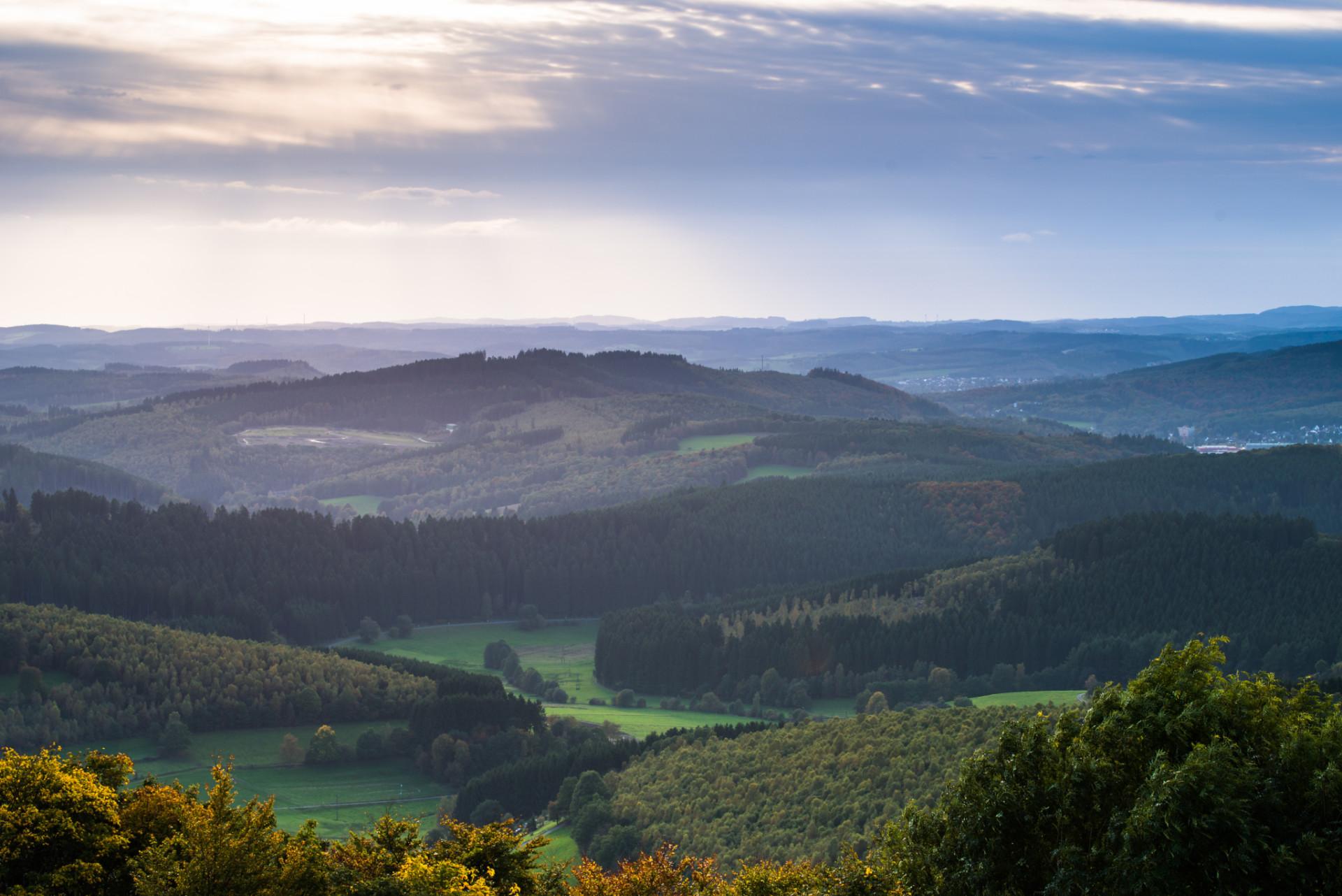 Landschaft Ginsburger Heide Wandern